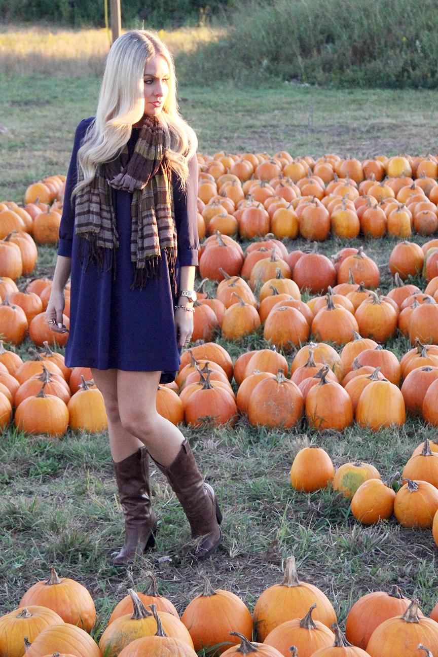 Pumpkin20