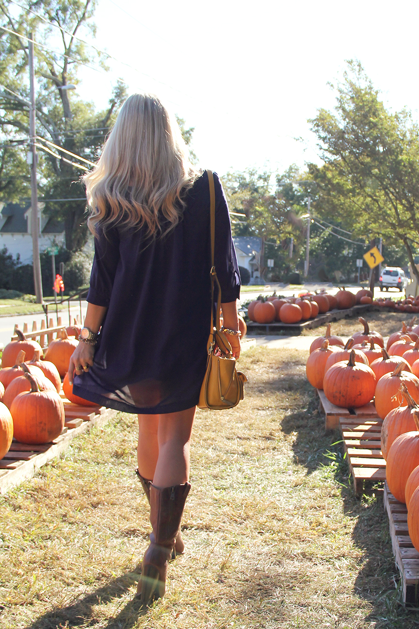 Pumpkin21