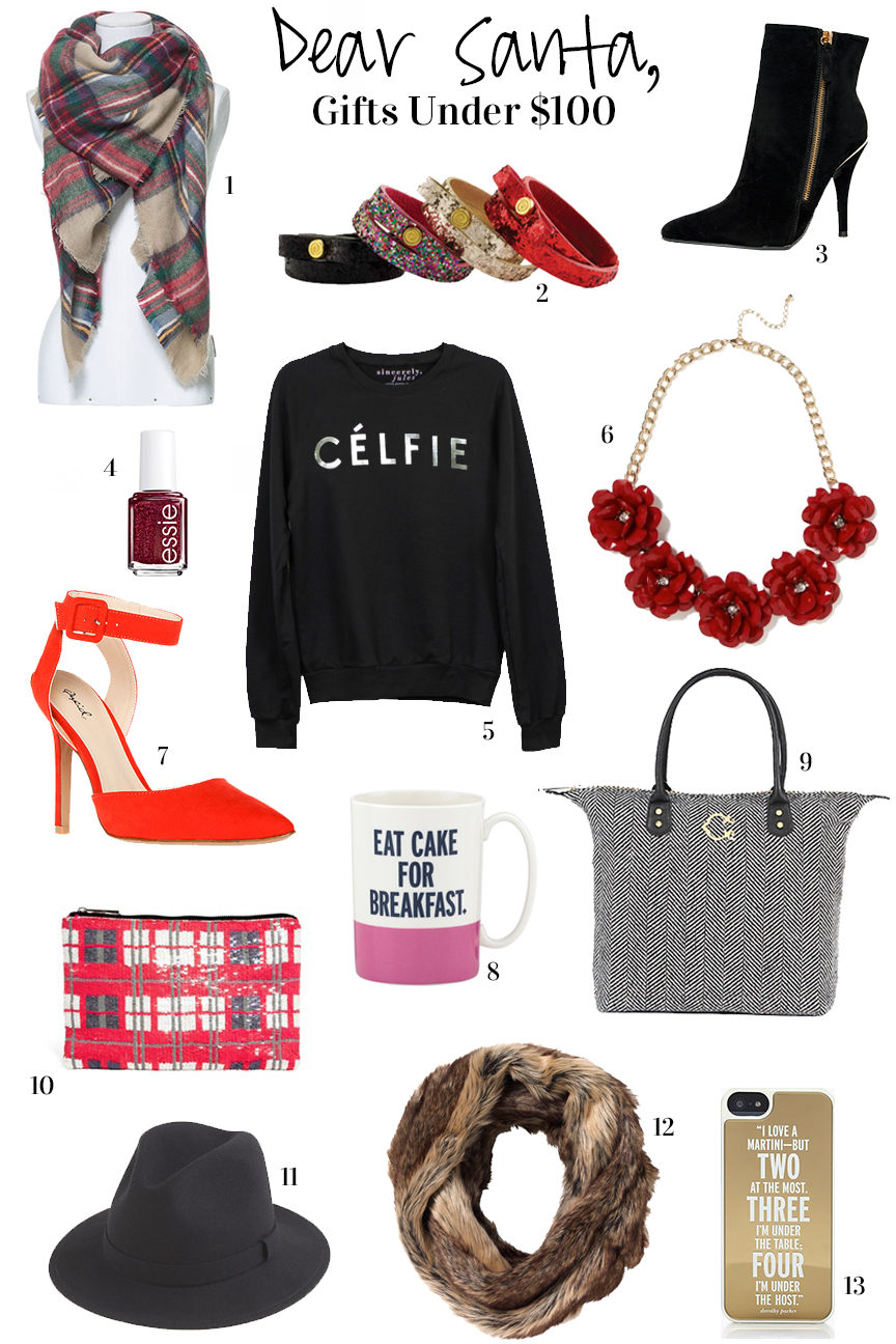 2013 Holiday Gift Guide under $100