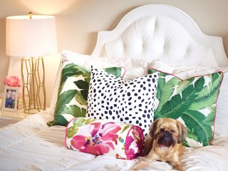 Palm Leaf and Dalmation Print Pillows