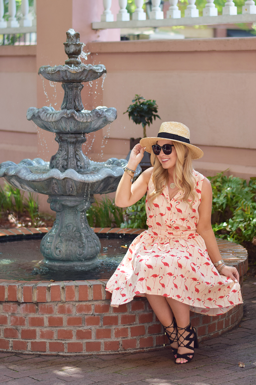 Chicwish Flamingo Dress 1