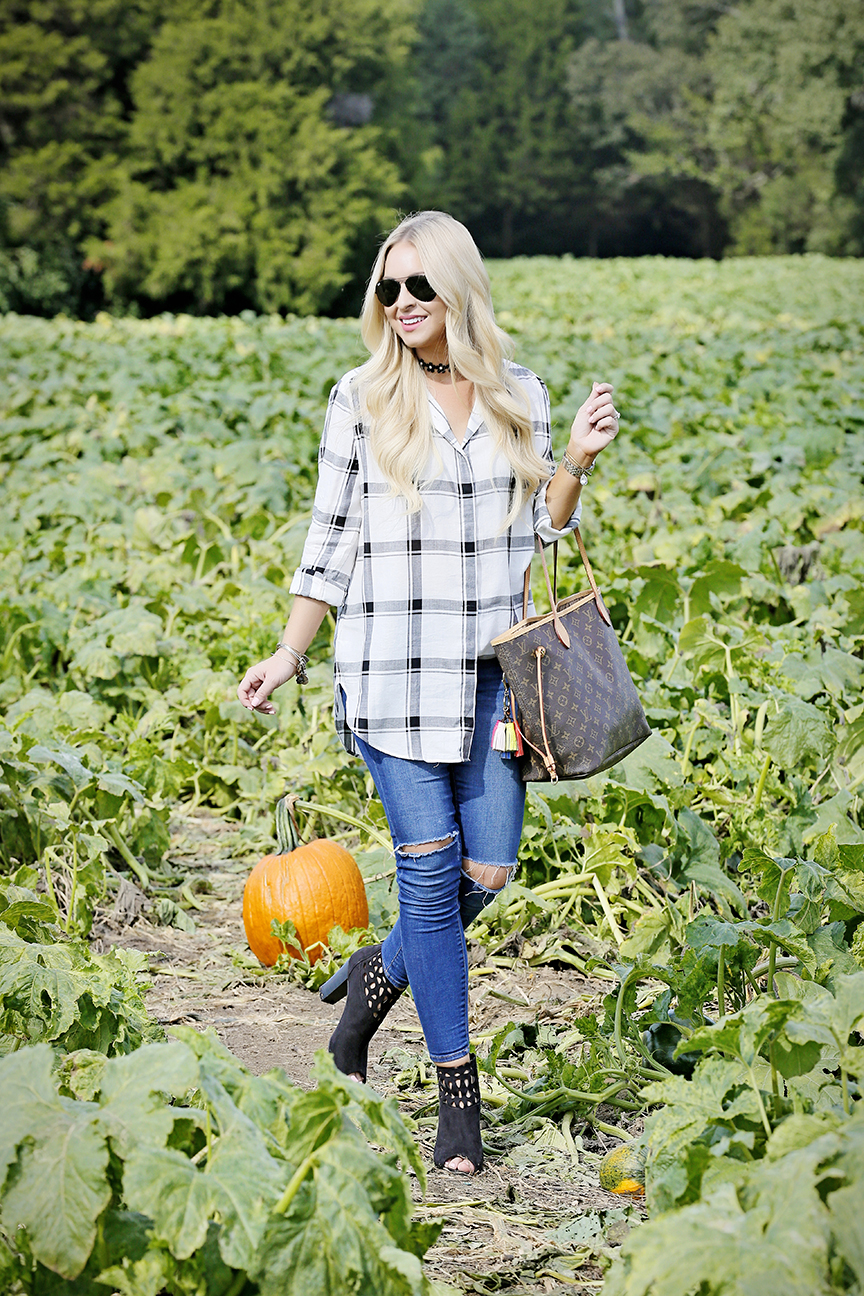 plaid-shirt-pumpkin-picking-6